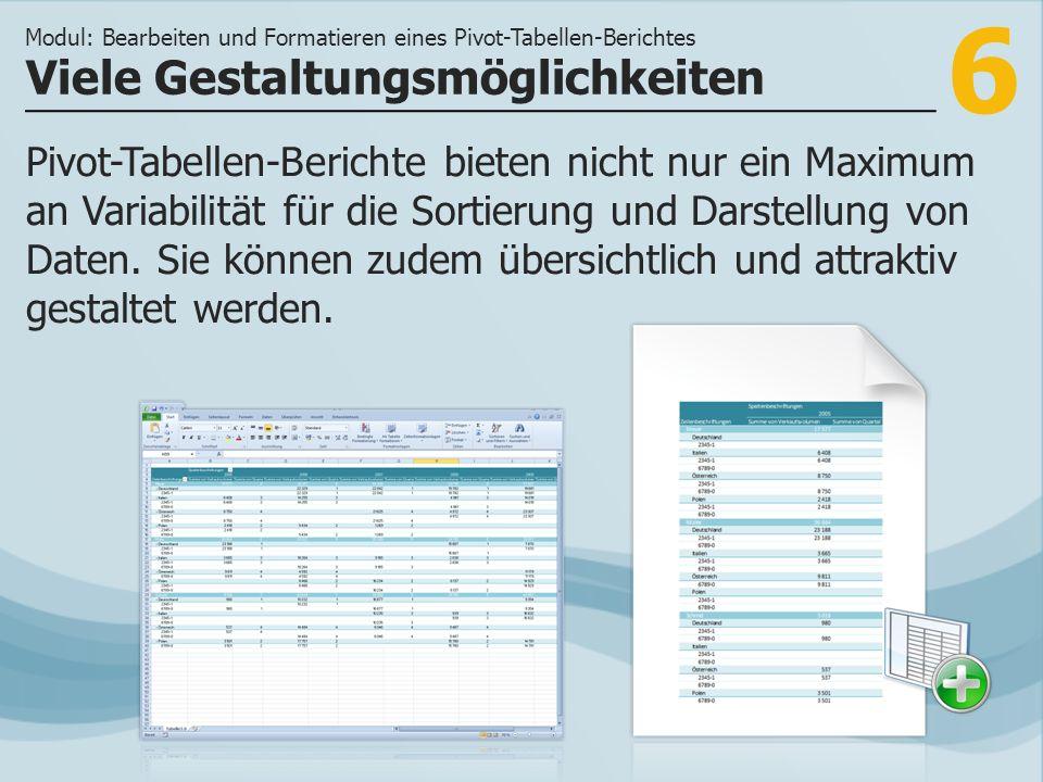 6 Pivot-Tabellen-Berichte bieten nicht nur ein Maximum an Variabilität für die Sortierung und Darstellung von Daten.