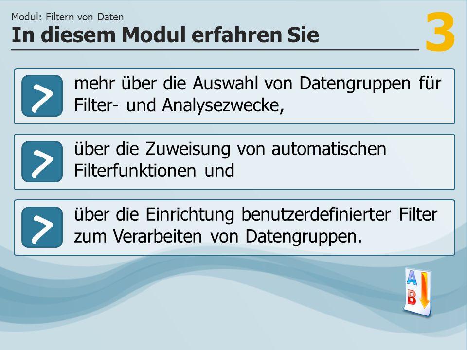 3 >> über die Zuweisung von automatischen Filterfunktionen und über die Einrichtung benutzerdefinierter Filter zum Verarbeiten von Datengruppen. In di