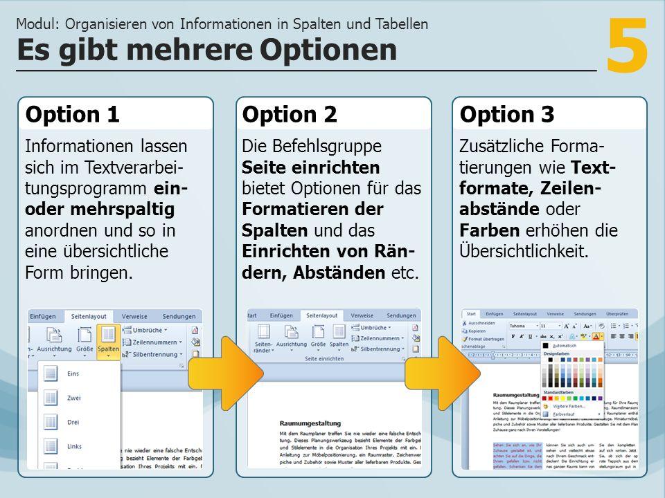 6 Optimierte Darstellung Modul: Organisieren von Informationen in Spalten und Tabellen Das Textverarbeitungsprogramm unterstützt Sie bei der geeigneten Darstellung von Informationen.