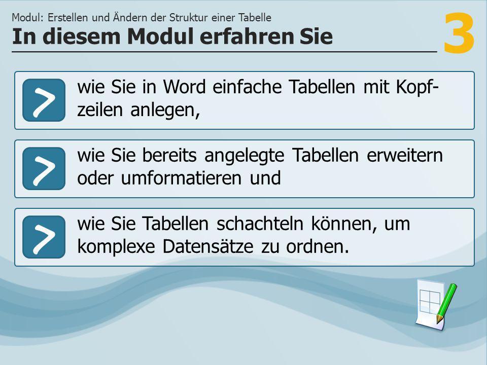 3 >> wie Sie bereits angelegte Tabellen erweitern oder umformatieren und wie Sie Tabellen schachteln können, um komplexe Datensätze zu ordnen.