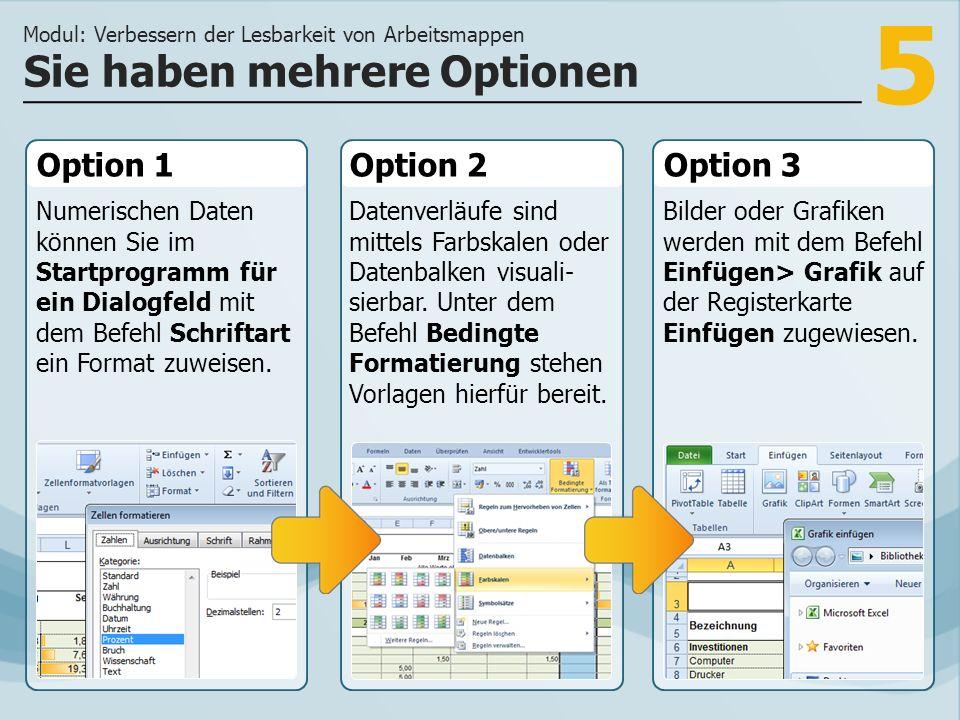 5 Option 1 Numerischen Daten können Sie im Startprogramm für ein Dialogfeld mit dem Befehl Schriftart ein Format zuweisen.