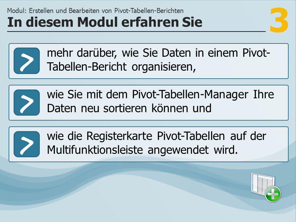 3 >> wie Sie mit dem Pivot-Tabellen-Manager Ihre Daten neu sortieren können und wie die Registerkarte Pivot-Tabellen auf der Multifunktionsleiste ange