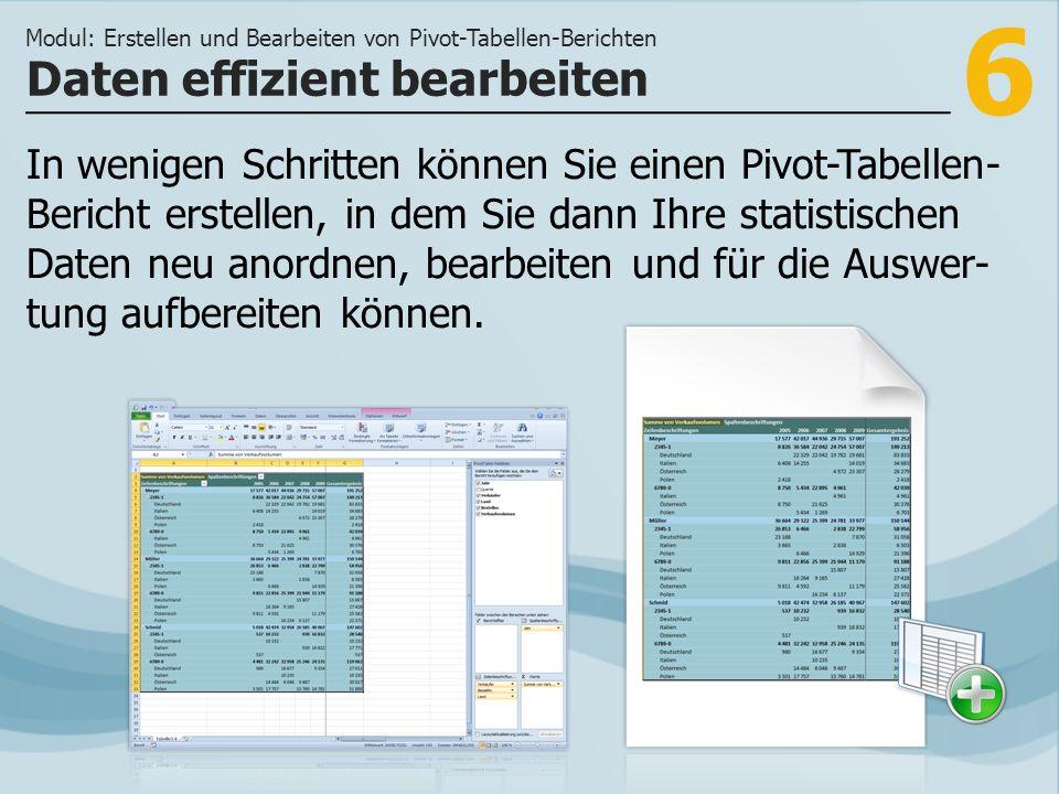 7 >>> Aus jeder vorhandenen Excel-Tabelle können Pivot-Tabellen-Berichte erstellt werden.