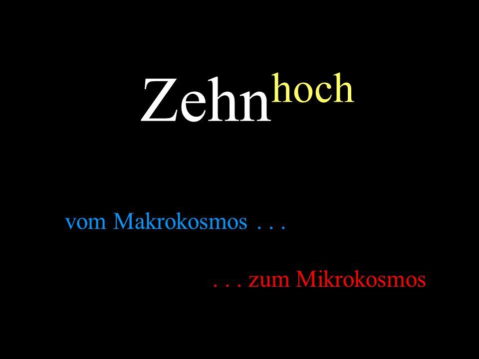 Zehn hoch vom Makrokosmos...... zum Mikrokosmos