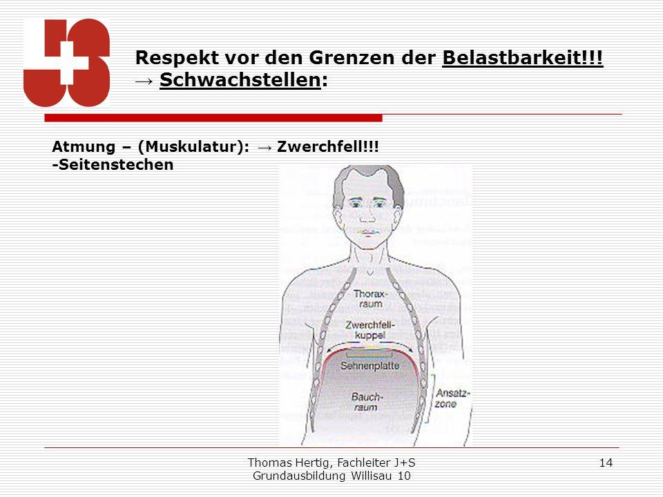 Thomas Hertig, Fachleiter J+S Grundausbildung Willisau 10 14 Respekt vor den Grenzen der Belastbarkeit!!! Schwachstellen: Atmung – (Muskulatur): Zwerc