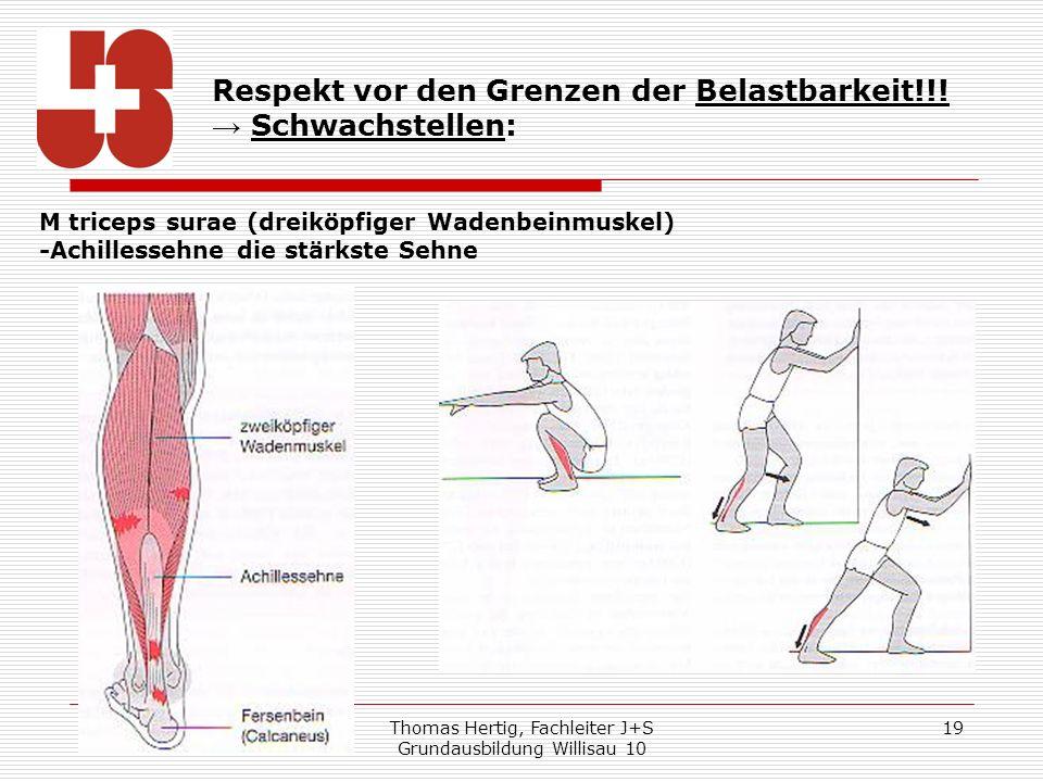 Thomas Hertig, Fachleiter J+S Grundausbildung Willisau 10 19 Respekt vor den Grenzen der Belastbarkeit!!! Schwachstellen: M triceps surae (dreiköpfige