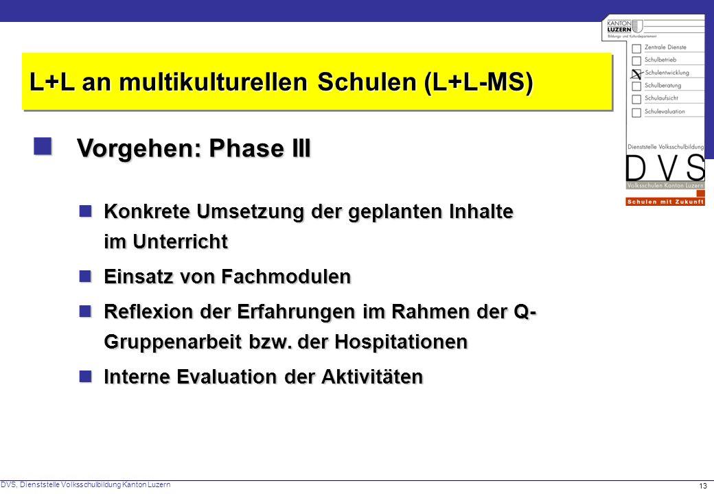 DVS, Dienststelle Volksschulbildung Kanton Luzern 13 Vorgehen: Phase III Vorgehen: Phase III L+L an multikulturellen Schulen (L+L-MS) Konkrete Umsetzu