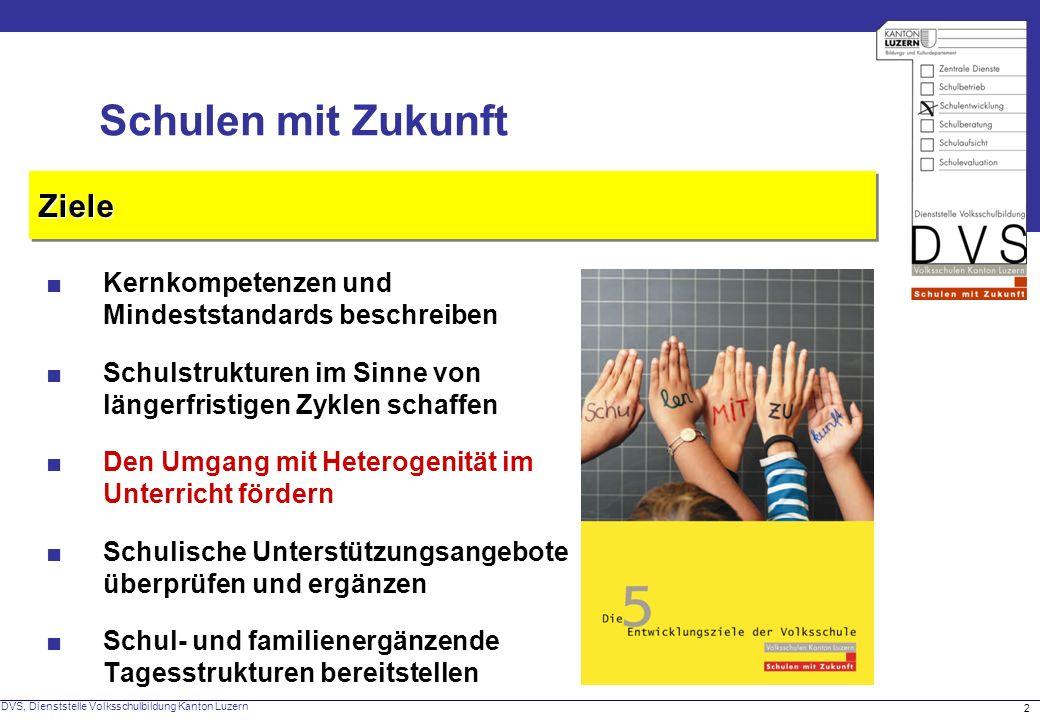 DVS, Dienststelle Volksschulbildung Kanton Luzern 2 ZieleZiele Schulen mit Zukunft Kernkompetenzen und Mindeststandards beschreiben Schulstrukturen im