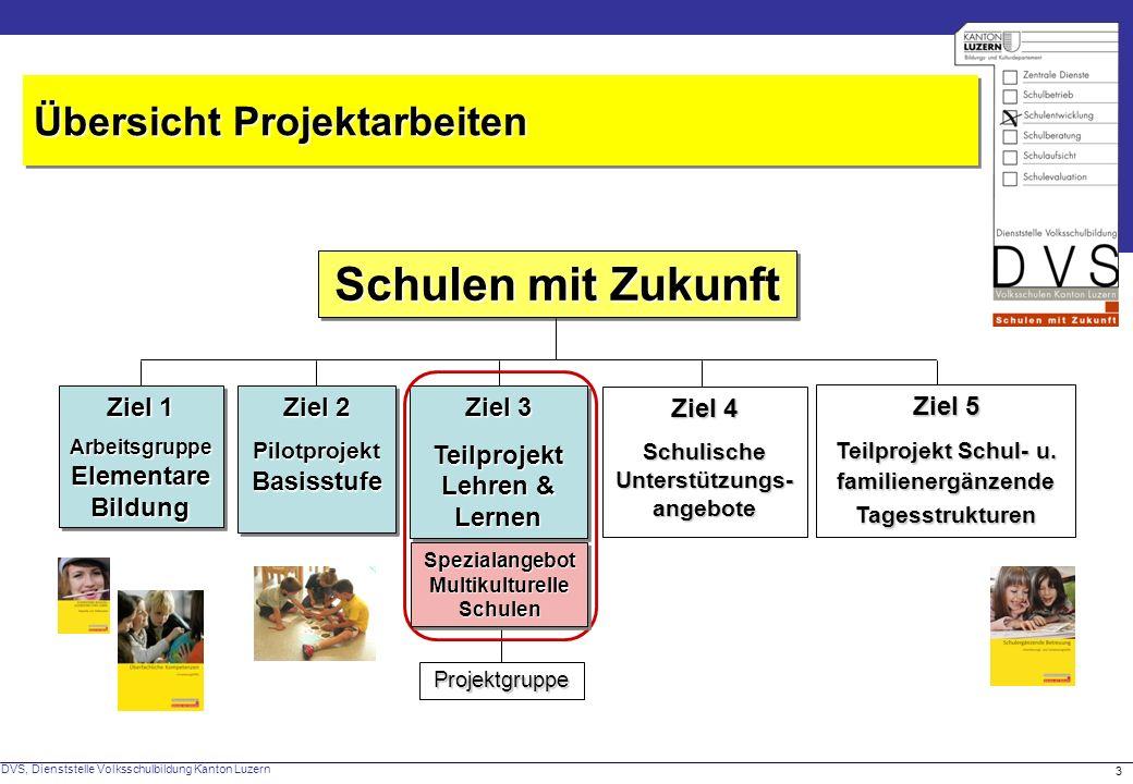 DVS, Dienststelle Volksschulbildung Kanton Luzern 14 L+L an multikulturellen Schulen (L+L-MS) Detailkonzept und weitere Unterlagen:Detailkonzept und weitere Unterlagen: www.schulenmitzukunft.ch www.schulenmitzukunft.ch 18 Projekt-Schulen (Start August 2008 und August 2009) 18 Projekt-Schulen (Start August 2008 und August 2009) Das Kontingent ist ausgeschöpft – ein Einstieg ist nicht mehr möglich.