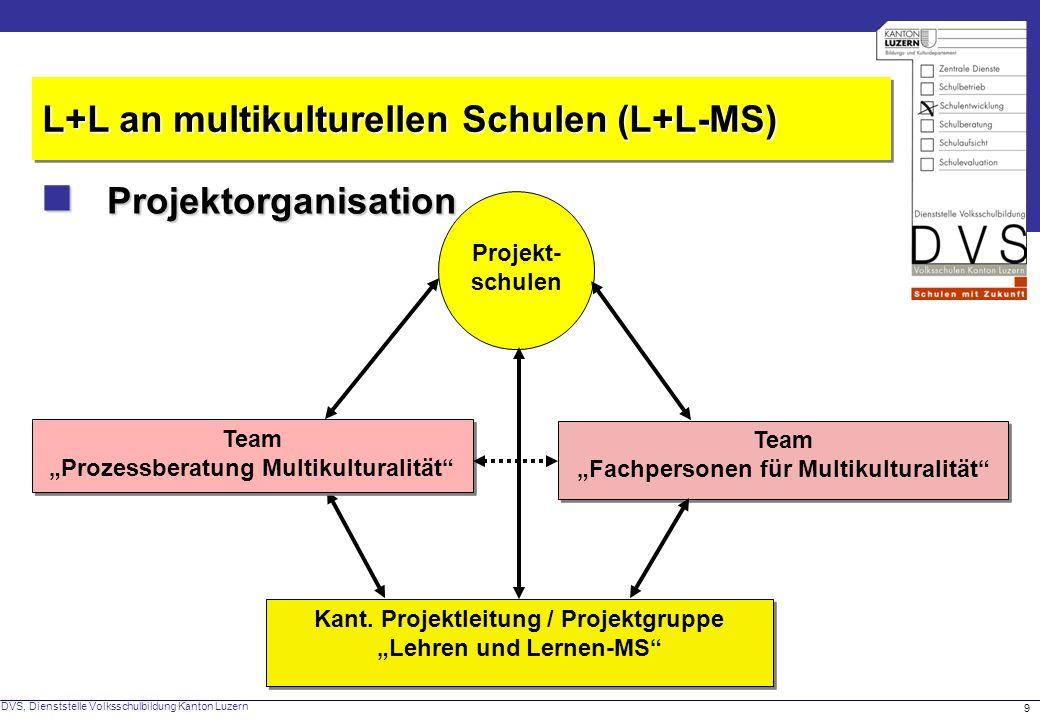 DVS, Dienststelle Volksschulbildung Kanton Luzern 9 Projektorganisation Projektorganisation L+L an multikulturellen Schulen (L+L-MS) Projekt- schulen