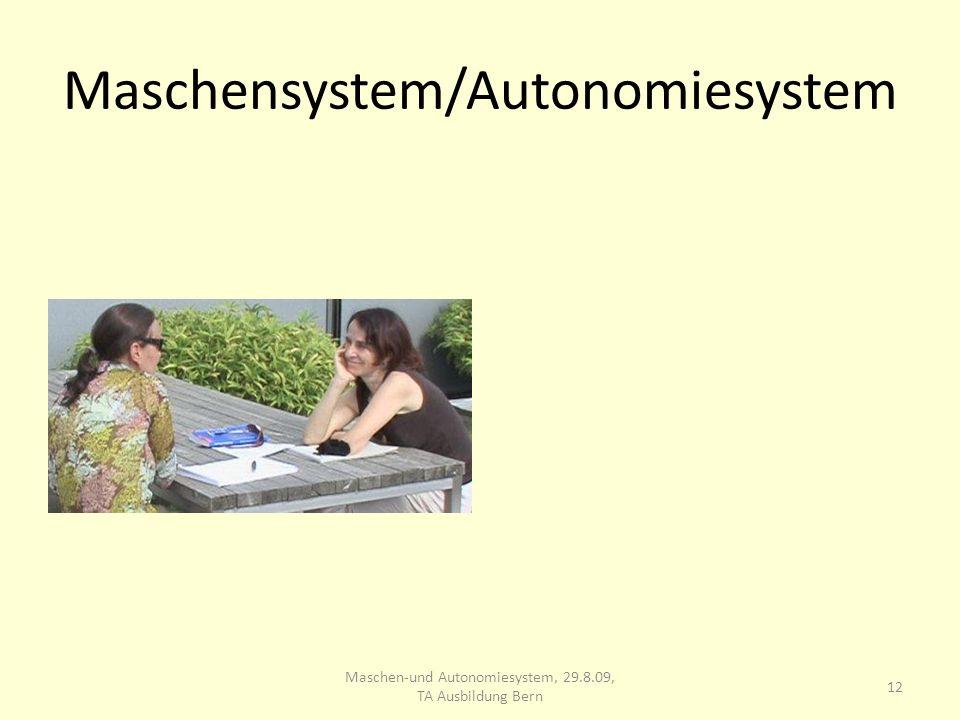 Maschensystem/Autonomiesystem 12 Maschen-und Autonomiesystem, 29.8.09, TA Ausbildung Bern