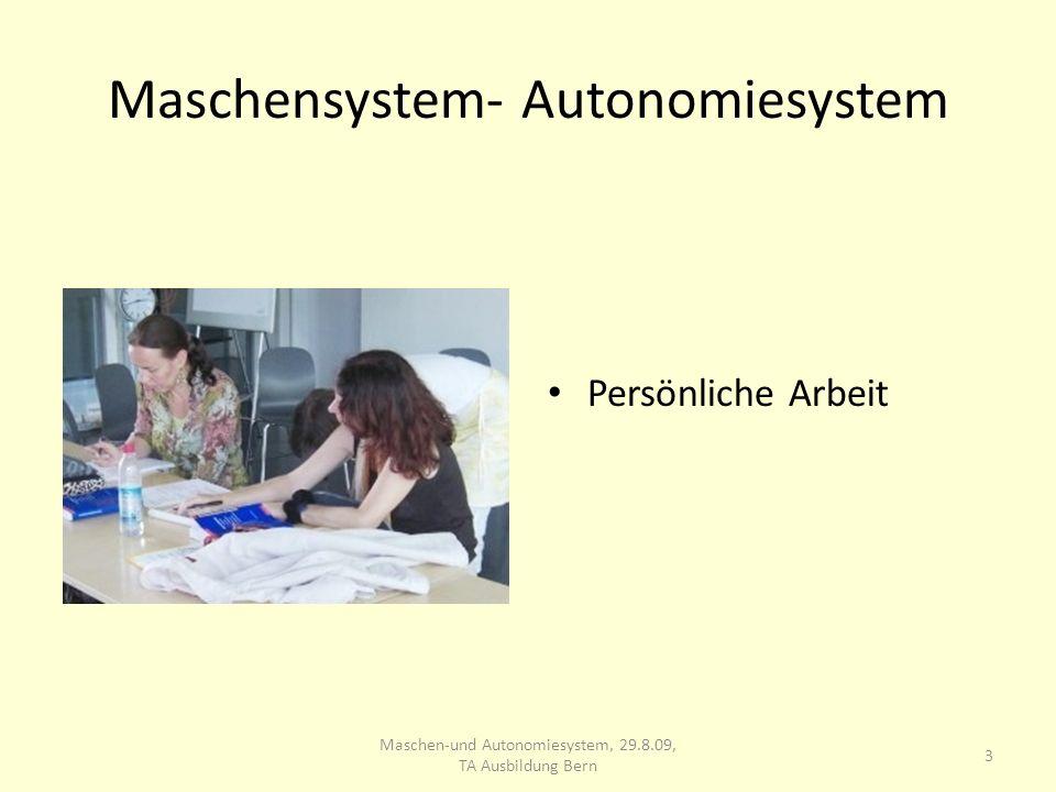 Maschensystem- Autonomiesystem Persönliche Arbeit 3 Maschen-und Autonomiesystem, 29.8.09, TA Ausbildung Bern