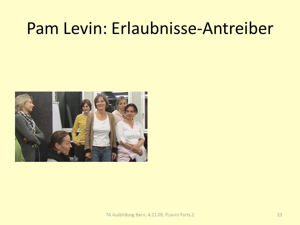 Pam Levin: Erlaubnisse-Antreiber 23TA Ausbildung Bern, 4.11.09, P.Levin Forts.2