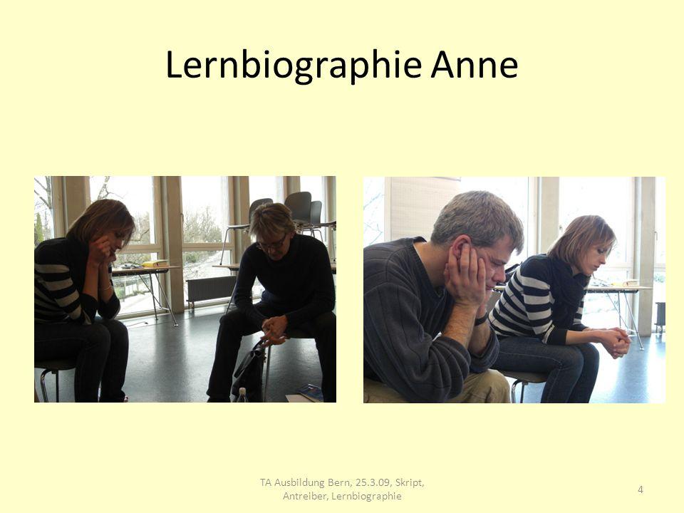 Lernbiographie 5 TA Ausbildung Bern, 25.3.09, Skript, Antreiber, Lernbiographie