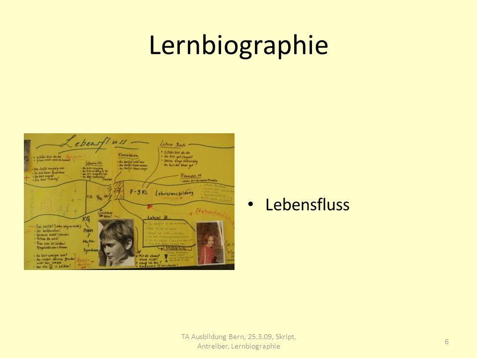 Lernbiographie Anne stellt Verbindungen zwischen ihrer Schulsituation und ihrem Verhalten als Lehrperson fest 7 TA Ausbildung Bern, 25.3.09, Skript, Antreiber, Lernbiographie