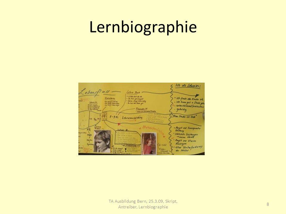 Skript Pam Levin (USA): Konstruktive Entw.variante> so viel Führung/Betreuung wie nötig, so wenig wie möglich: Führender und Geführter nehmen sich und den andern ernst, +/+ Haltung, 9 TA Ausbildung Bern, 25.3.09, Skript, Antreiber, Lernbiographie