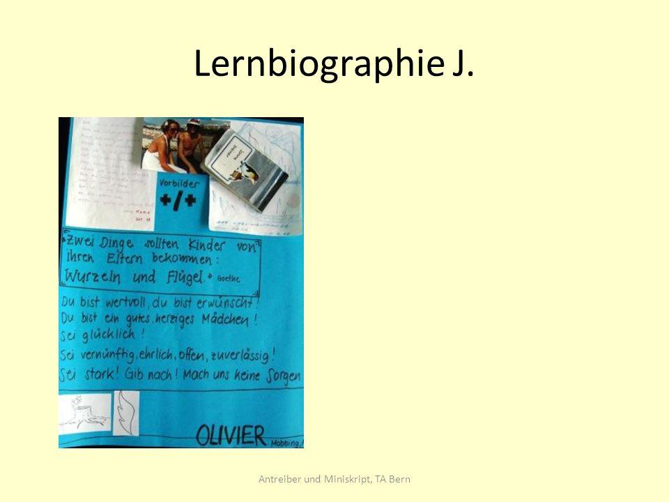 Lernbiographie J. Antreiber und Miniskript, TA Bern