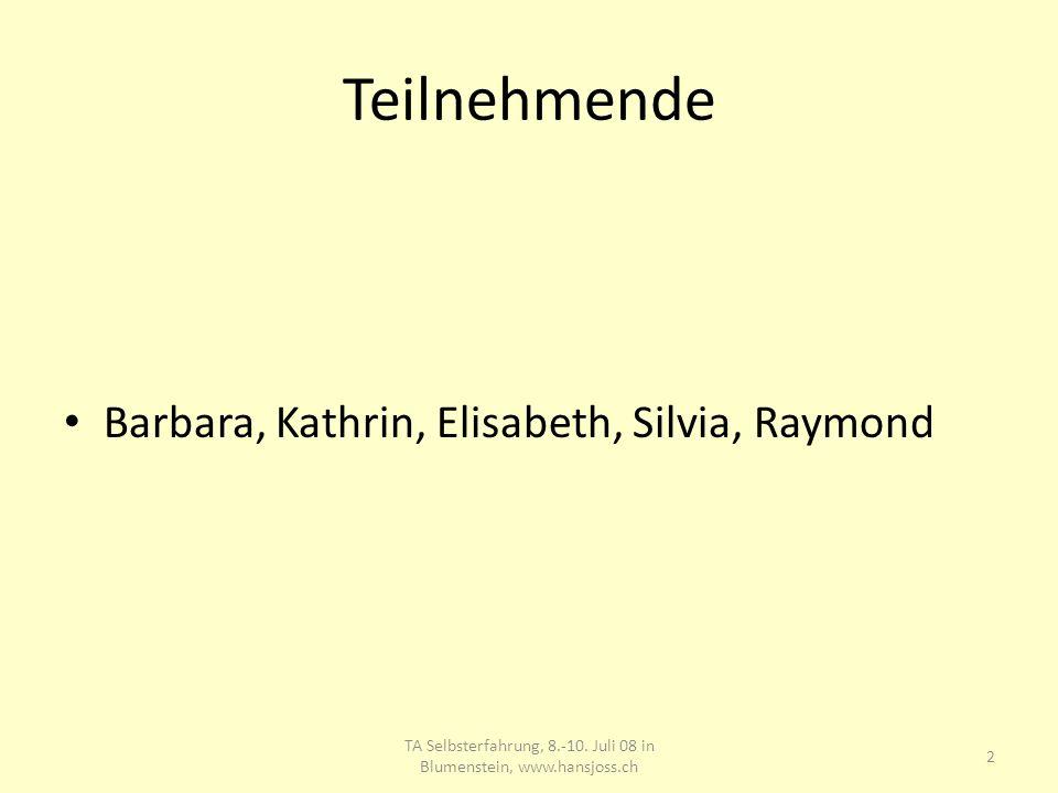 Teilnehmende Barbara, Kathrin, Elisabeth, Silvia, Raymond 2 TA Selbsterfahrung, 8.-10. Juli 08 in Blumenstein, www.hansjoss.ch