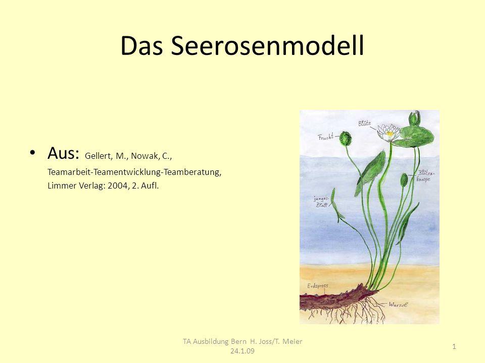 Das Seerosenmodell Aus: Gellert, M., Nowak, C., Teamarbeit-Teamentwicklung-Teamberatung, Limmer Verlag: 2004, 2. Aufl. TA Ausbildung Bern H. Joss/T. M