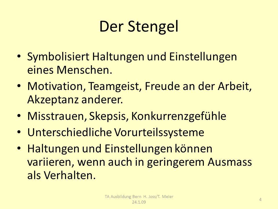 Der Stengel Symbolisiert Haltungen und Einstellungen eines Menschen. Motivation, Teamgeist, Freude an der Arbeit, Akzeptanz anderer. Misstrauen, Skeps