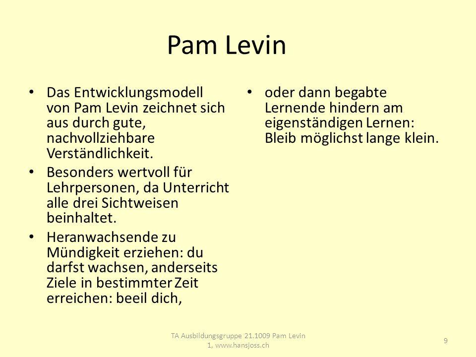 Pam Levin Das Entwicklungsmodell von Pam Levin zeichnet sich aus durch gute, nachvollziehbare Verständlichkeit.