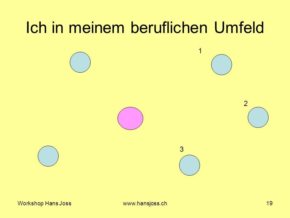 Workshop Hans Josswww.hansjoss.ch19 Ich in meinem beruflichen Umfeld 1 2 3