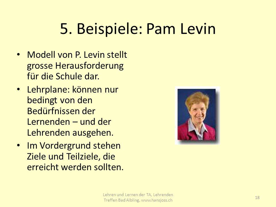 5.Beispiele: Pam Levin Modell von P. Levin stellt grosse Herausforderung für die Schule dar.