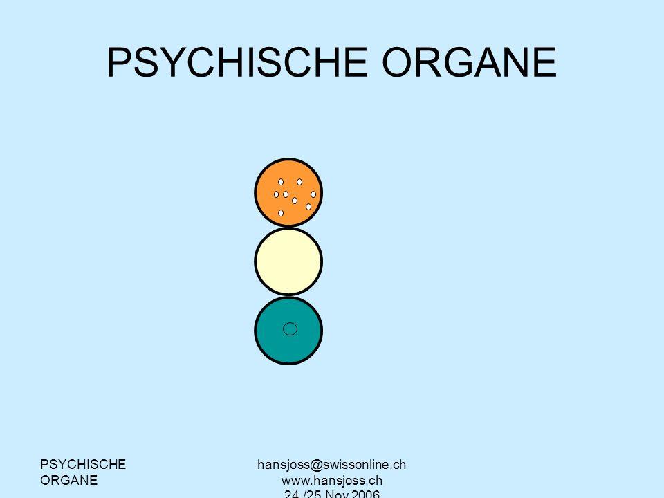PSYCHISCHE ORGANE hansjoss@swissonline.ch www.hansjoss.ch 24./25.Nov.2006 Archipallium brain (reptilian brain) Palleomammalian brain (limbic system) Neopallium brain (neocortex)
