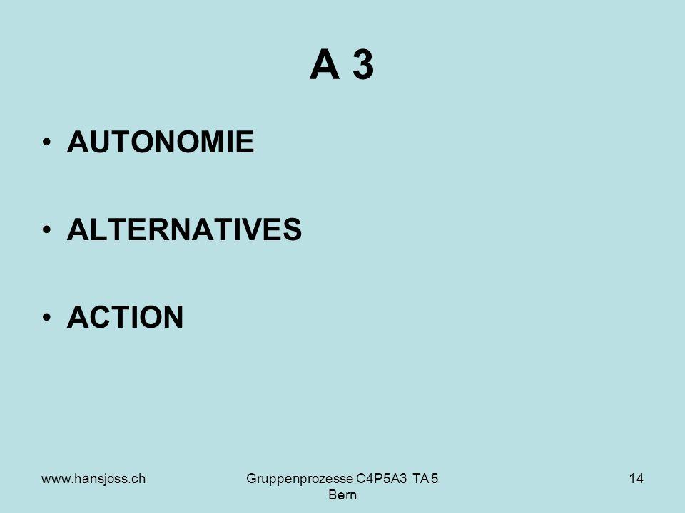 www.hansjoss.chGruppenprozesse C4P5A3 TA 5 Bern 14 A 3 AUTONOMIE ALTERNATIVES ACTION