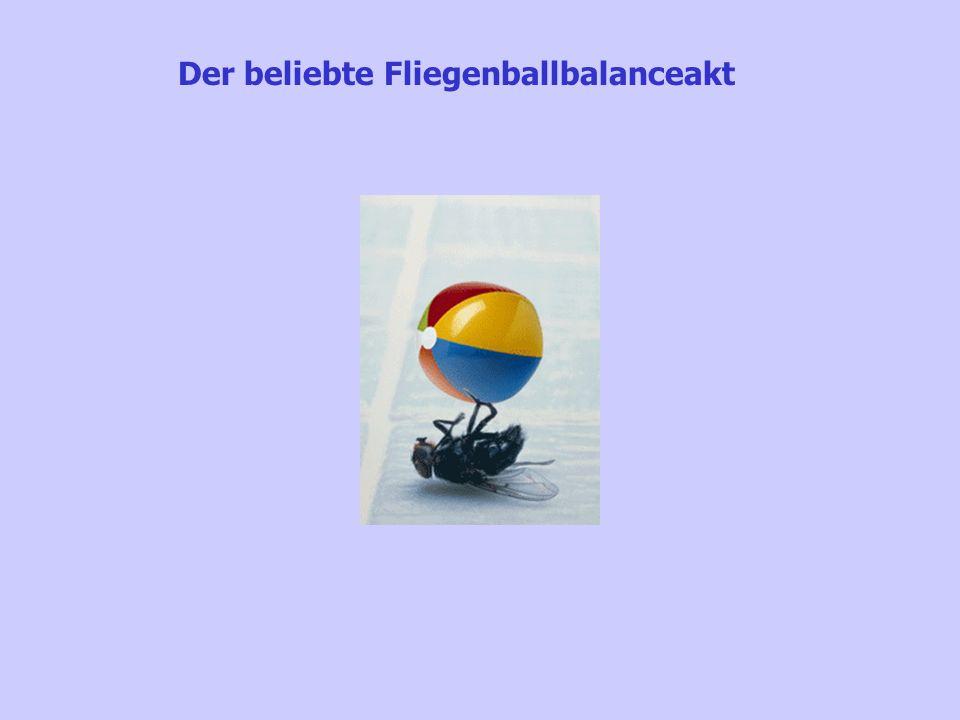 Der beliebte Fliegenballbalanceakt