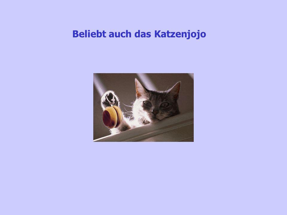 Beliebt auch das Katzenjojo