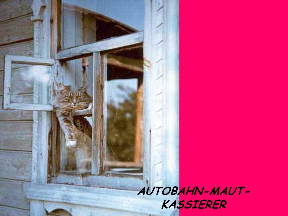 AUTOBAHN-MAUT- KASSIERER