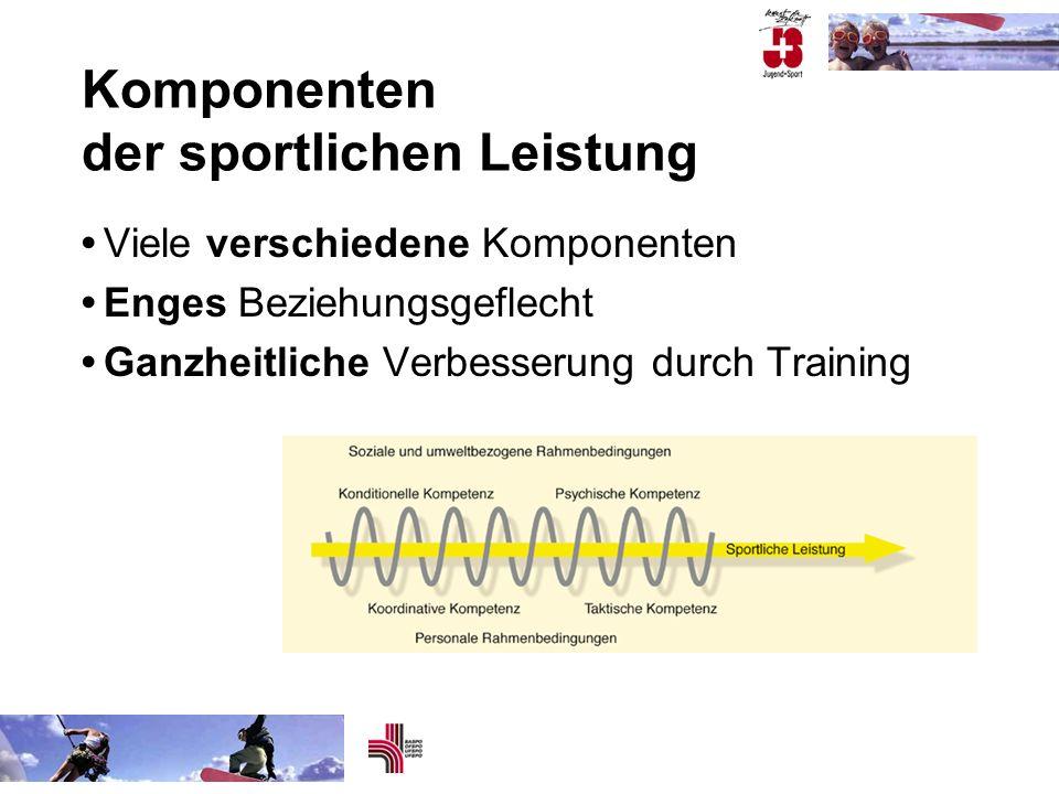 Komponenten der sportlichen Leistung Viele verschiedene Komponenten Enges Beziehungsgeflecht Ganzheitliche Verbesserung durch Training