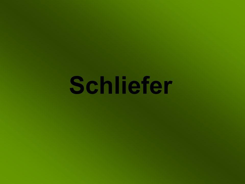 Schliefer