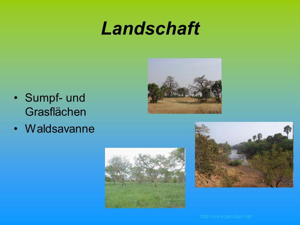 Landschaft Sumpf- und Grasflächen Waldsavanne http://www.pendjari.net