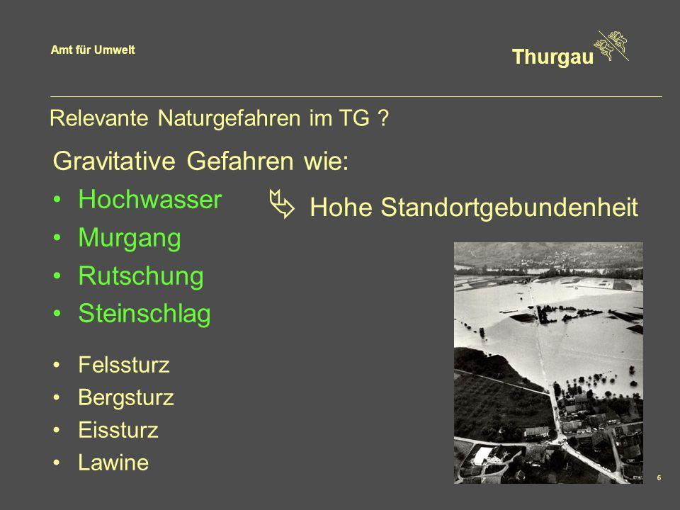 Amt für Umwelt Thurgau 6 Relevante Naturgefahren im TG ? Gravitative Gefahren wie: Hochwasser Murgang Rutschung Steinschlag Felssturz Bergsturz Eisstu