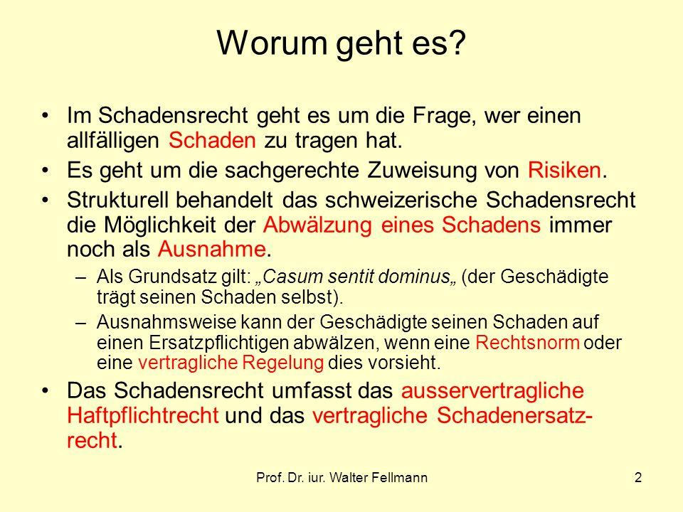 Prof. Dr. iur. Walter Fellmann2 Worum geht es? Im Schadensrecht geht es um die Frage, wer einen allfälligen Schaden zu tragen hat. Es geht um die sach