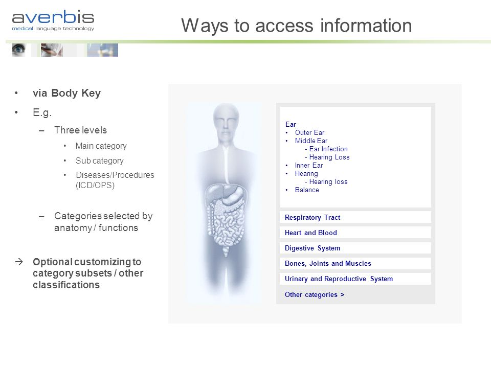 Ways to access information via Body Key E.g. –Three levels Main category Sub category Diseases/Procedures (ICD/OPS) –Categories selected by anatomy /