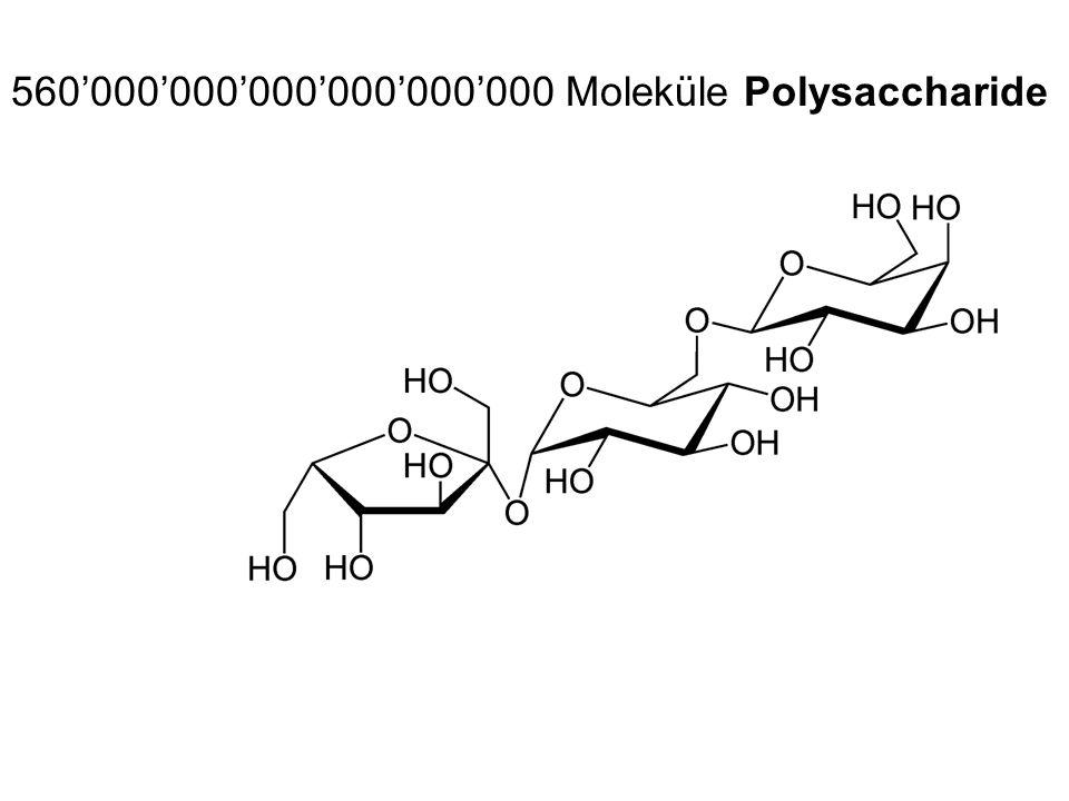 560000000000000000000 Moleküle Polysaccharide