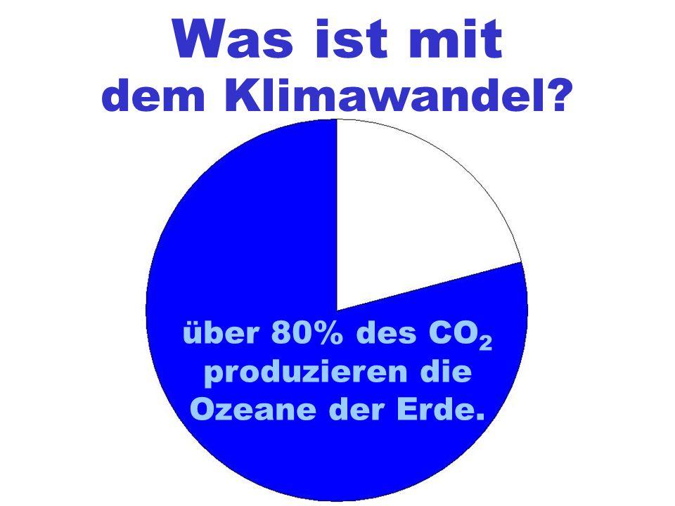 Was ist mit dem Klimawandel? über 80% des CO 2 produzieren die Ozeane der Erde.