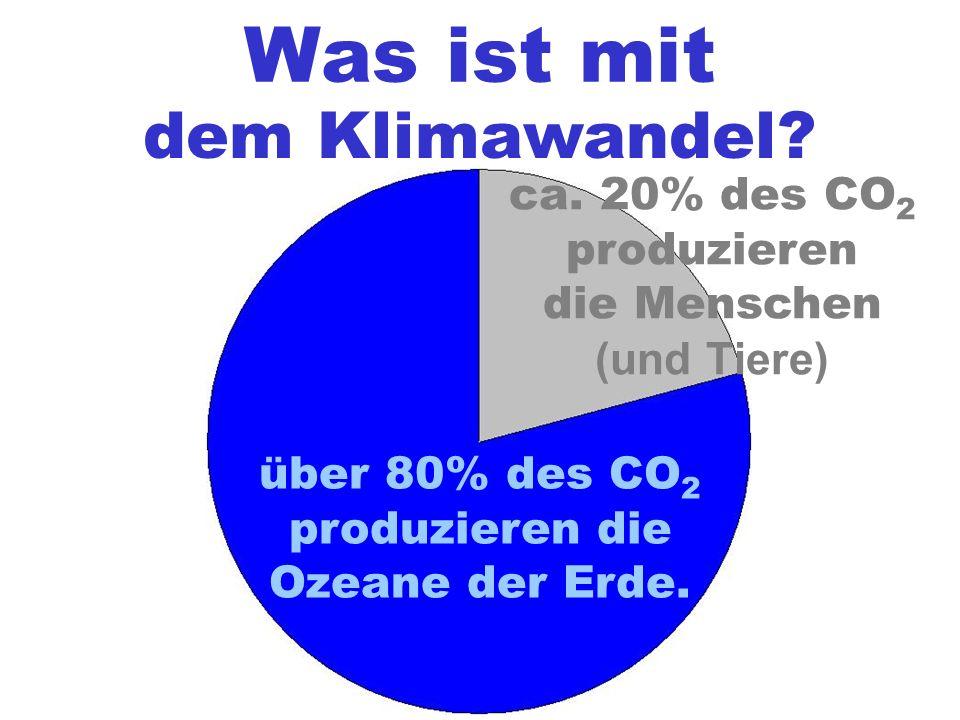 Was ist mit dem Klimawandel? über 80% des CO 2 produzieren die Ozeane der Erde. ca. 20% des CO 2 produzieren die Menschen (und Tiere)