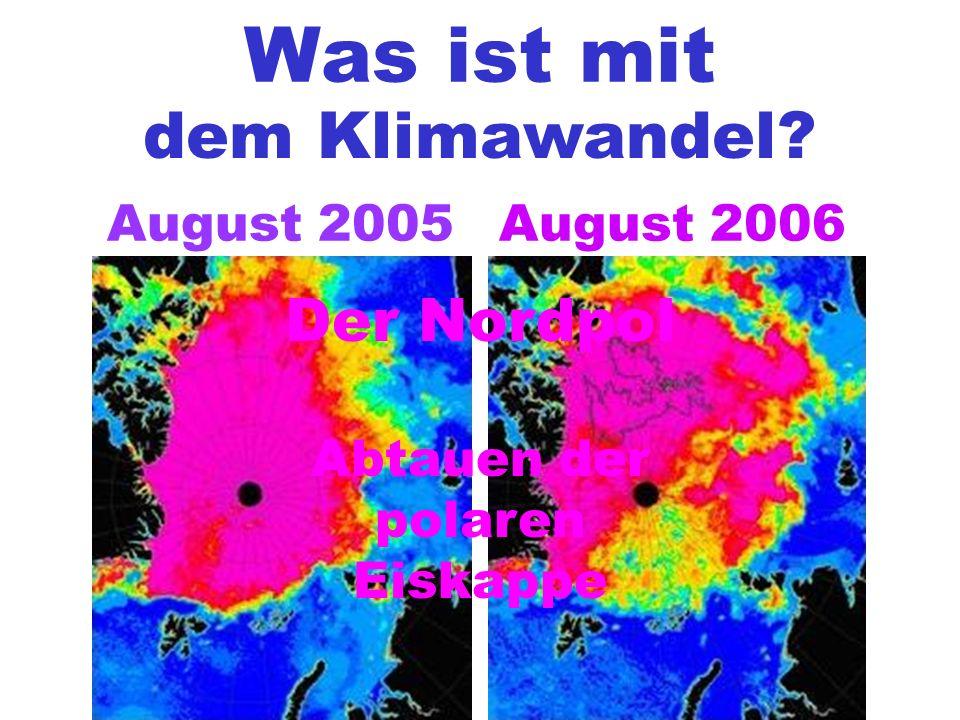 Was ist mit dem Klimawandel? August 2005August 2006 Der Nordpol Abtauen der polaren Eiskappe