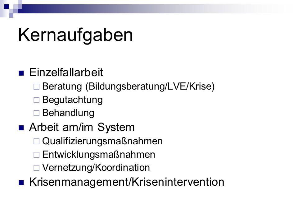 Kernaufgaben Einzelfallarbeit Beratung (Bildungsberatung/LVE/Krise) Begutachtung Behandlung Arbeit am/im System Qualifizierungsmaßnahmen Entwicklungsm