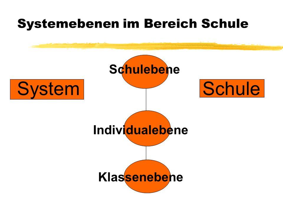 Systemebenen im Bereich Schule Schulebene System Schule Individualebene Klassenebene