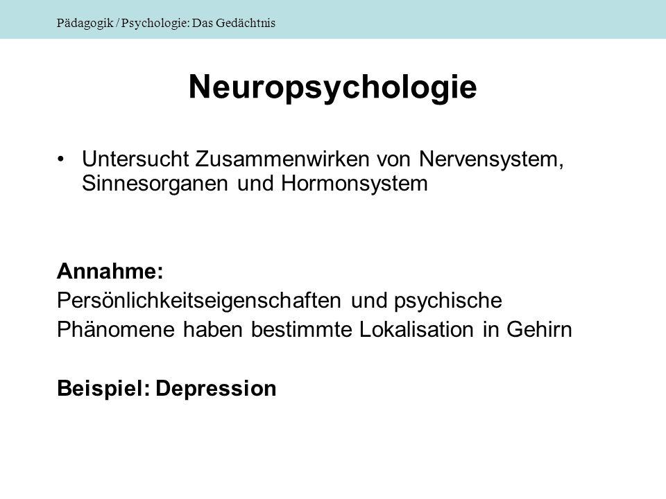 Pädagogik / Psychologie: Das Gedächtnis Neuropsychologie Untersucht Zusammenwirken von Nervensystem, Sinnesorganen und Hormonsystem Annahme: Persönlic