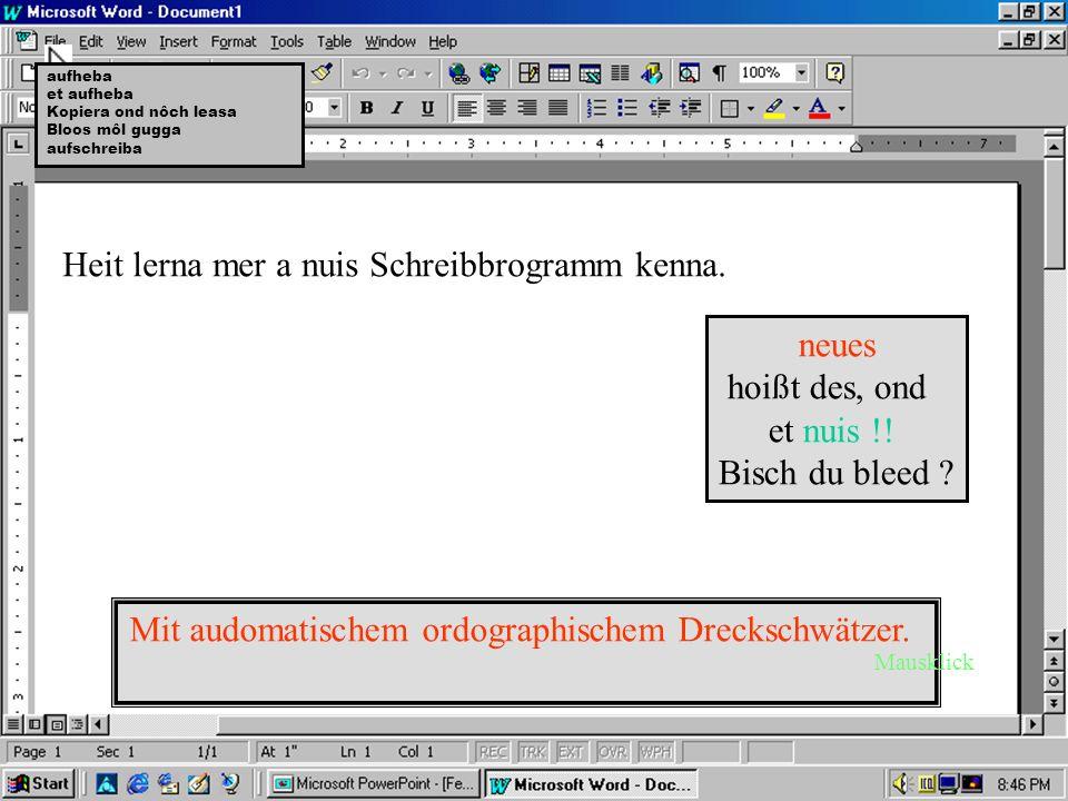 Schreibbrogramm Winwörd.äxe Schärwärwersio 3.elf718.jg Du hôsch koi Reacht, also lass no.... Serianummer:4711-08/15 -Mausklick weiter-