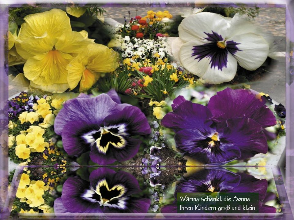 Raschelt durchs alte Laub geschwind Streicht sanft um jedes Blumenkind