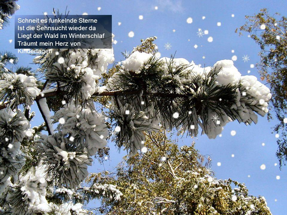 Wärmen schwarze Öfen Laben Kastanien und Punsch Funkeln Eiskristalle durch die Luft Zaubern ein Lächeln in die Winternacht