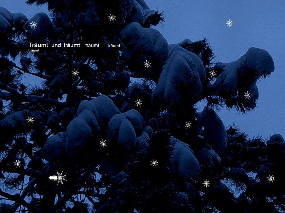 Schneit es funkelnde Sterne Ist die Sehnsucht wieder da Liegt der Wald im Winterschlaf Träumt mein Herz von Kindertagen