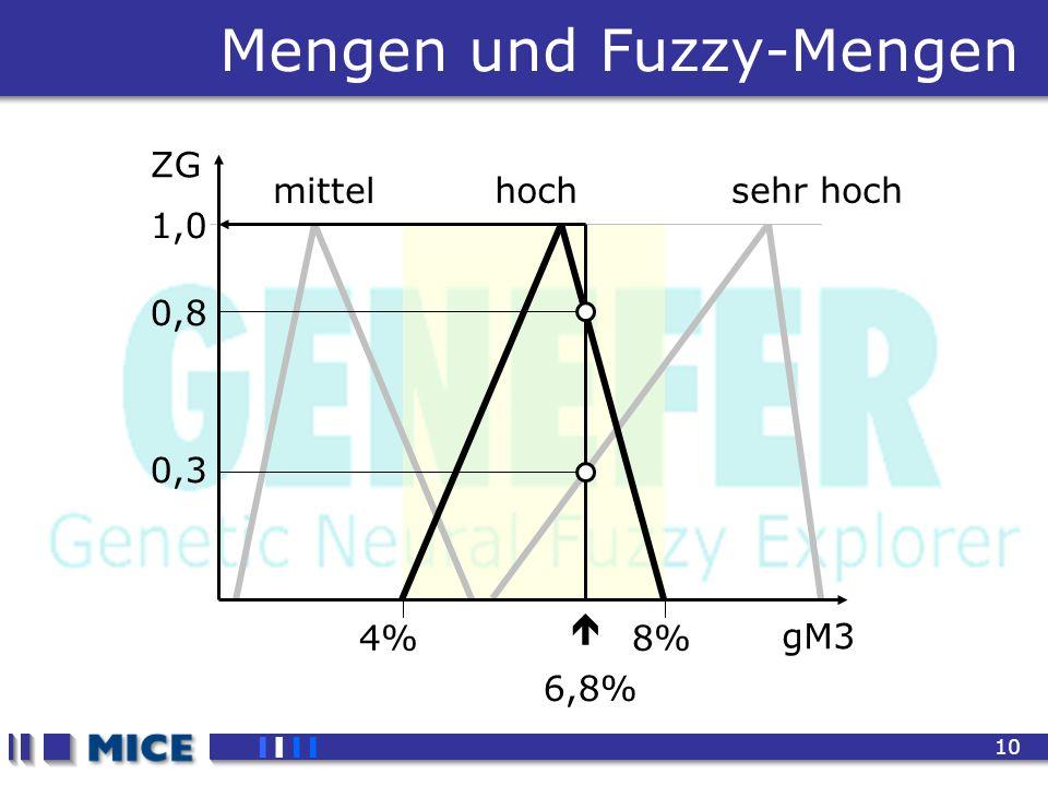 CEF 2001, New Haven 10 4%8% mittel sehr hoch Mengen und Fuzzy-Mengen gM3 ZG 1,0 hoch 0,8 0,3 6,8%